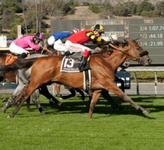 Longshot Toowindytohaulrox Rallies From Far Off Pace to Win G3, Daytona Stakes