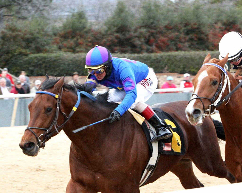 DISCREETNESS - The Smarty Jones - 9th Running - 01-18-16 - R08 - OP - Inside - Photo Credit: Coady Photography
