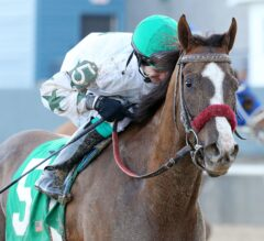 Haveyougoneaway Pulls Upset Over Sarah Sis in American Beauty Stakes