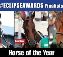 2015 Eclipse Awards Finalists Announced