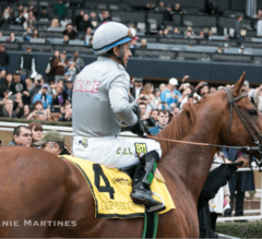 California Chrome: The Good, The Bad, and The Ugly