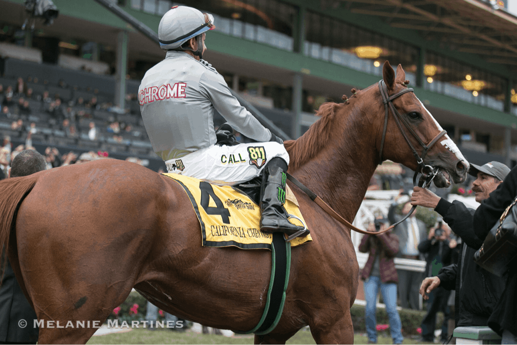 California Chrome wins Grade II, $200,000 San Pasqual Stakes - Photo Credit: Melanie Martines