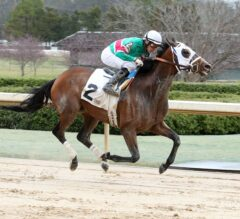 Competitive Field Lines Up for Sunday's $100,000 Pippin Stakes at Oaklawn Park