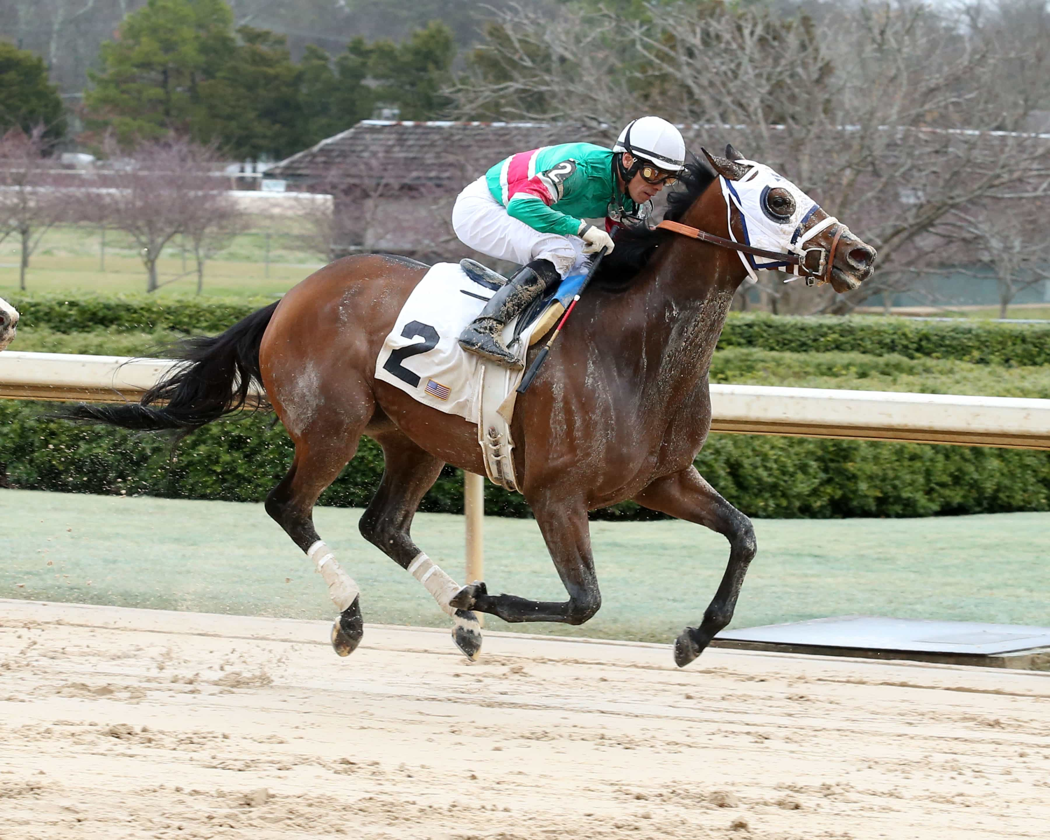 Pippin starter Pearl Turn winning at Oaklawn - Photo Credit: Coady Photography