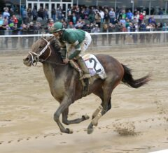 Gulfstream Park Notes: Maturing Greenpointcrusader Returns to Action in G2 Holy Bull