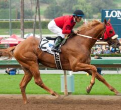 Smokey Image Cruises to 8 1/2 Length Win in California Cup Derby