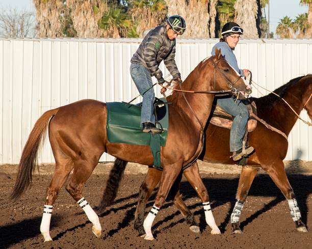 With Espinoza Up, 'Chrome' Set for Final Work in Advance of Showdown with Dortmund - Photo Credit: ©Benoit Photo