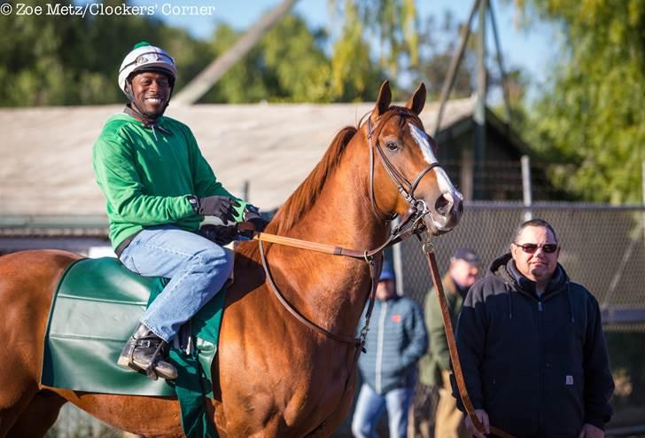 California Chrome Arrives for San Pasqual Stakes - Photo Credit: Zoe Metz/Clockers' Corner