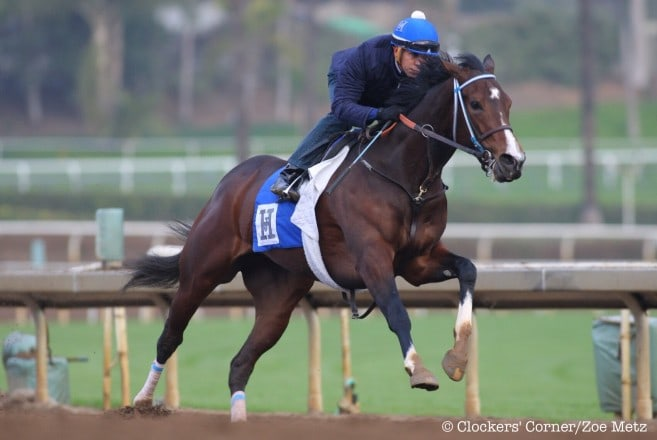 Songbird and Mike Smith workout Thursday morning - Photo Credit: ©Clockers' Corner/Zoe Metz
