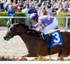 Gulfstream Park Notes: Awesome Banner, Fellowship Both Pointing to Fountain of Youth