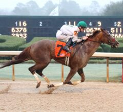 Oaklawn Report #6: Haveyougoneaway Wins Second Straight Stakes