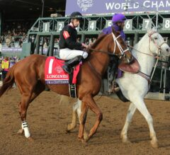 Breeders' Cup Challenge Series Race Previews: Sunday October 9
