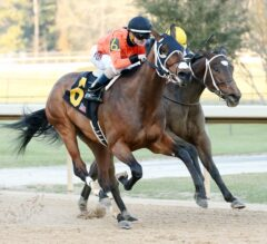 Oaklawn Report #4: Marquee Miss Upsets Nickname