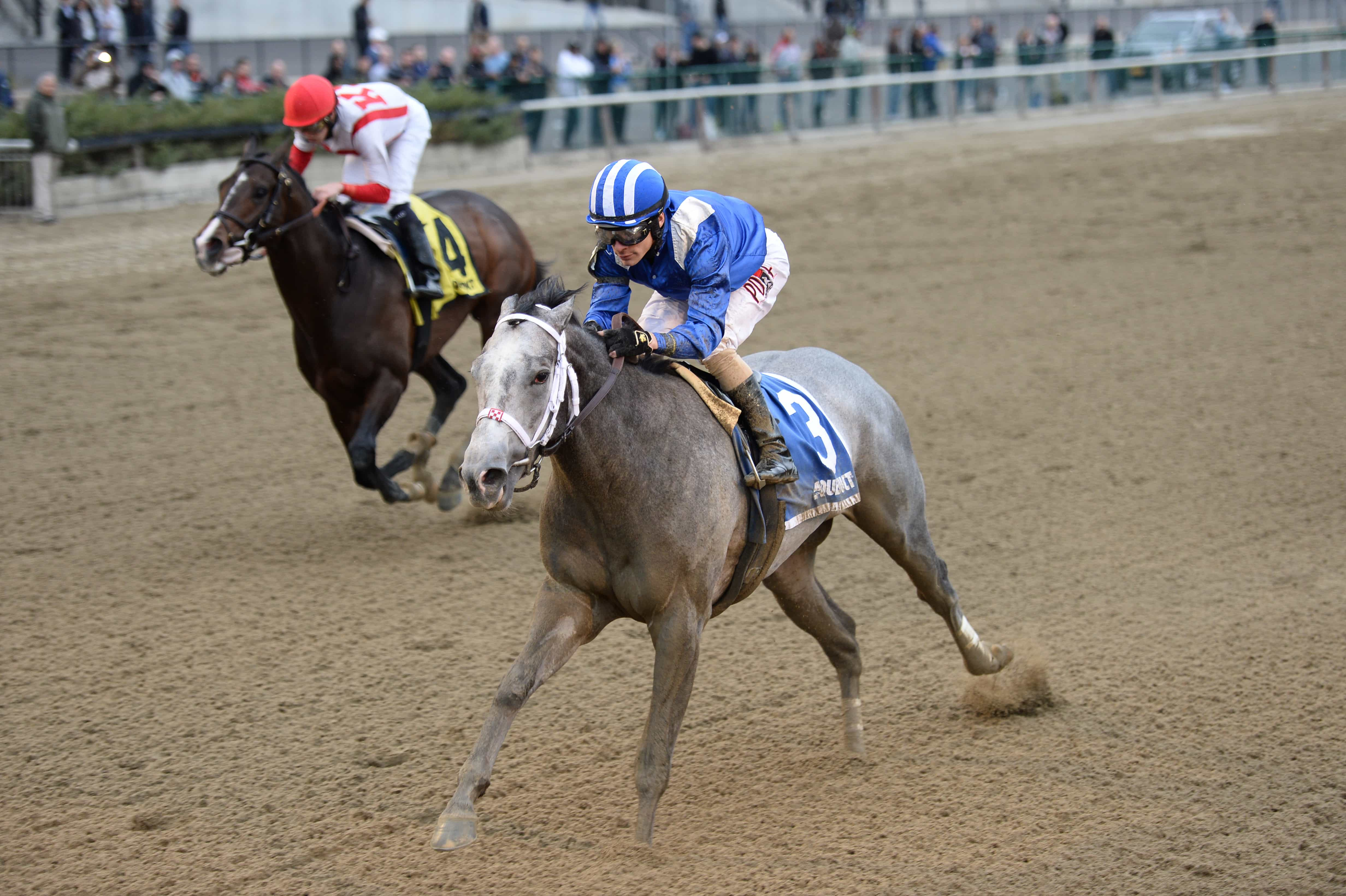 Mohaymen the Remsen - Photo Credit: Chelsea Durand