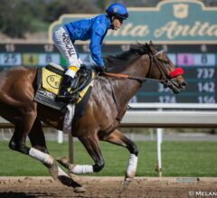 Unbeaten Champion Nyquist and Undefeated Mohaymen Top Nominees to Keeneland's $1 Million Toyota Blue Grass