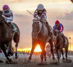 Fair Grounds Barn Notes: Asmussen Looking for Progress from Gun Runner in Louisiana Derby