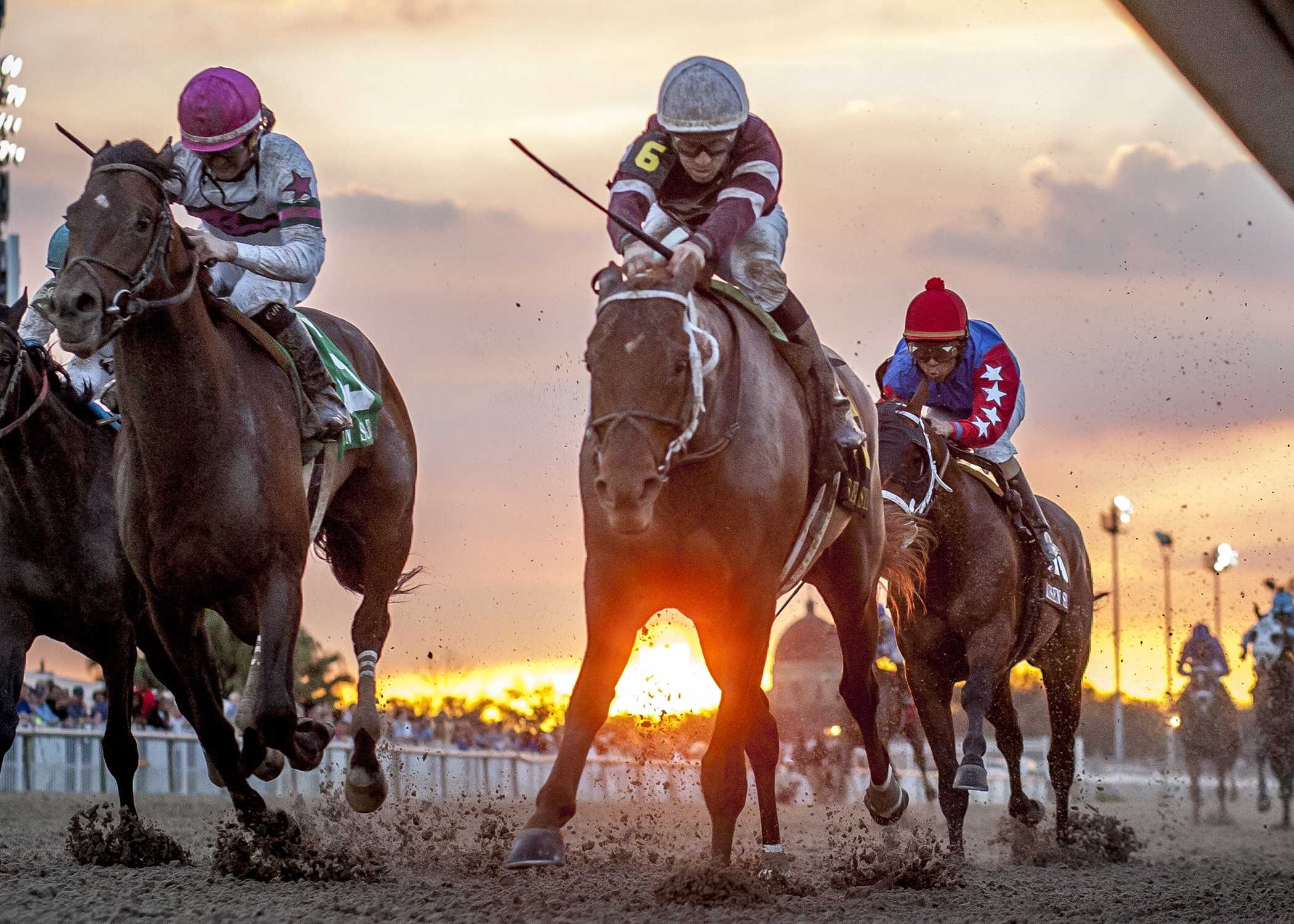 Gun Runner, No 6, with jockey Shaun Bridgmohan aboad, drives to the wire to win the Risen Star Stakes (GrII) at the Fair Grounds Race Course in New Orleans, LA Saturday, February 20, 2016. Photo By Amanda Hodges Weir / Hodges Photography