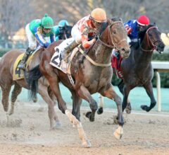 Thirteen Horses Work Toward Kentucky Derby 142, Five for Kentucky Oaks