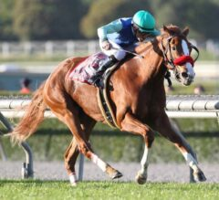 Stevens Guides Paulina's Love to Victory in G2 Buena Vista Over Stormy Lucy