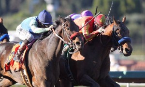 Hoppertunity beats Imperative by nose in San Antonio Stakes - Photo Credit: ©Benoit Photo