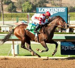Undefeated Eclipse Champ Songbird Makes 3-Year-Old Debut in Las Virgenes Stakes