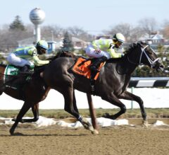 Fields Taking Shape for Gotham Weekend at Aqueduct
