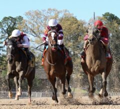 Call Pat Upsets Odds-On Favorite Untapable in G2 $350,000 Azeri Stakes