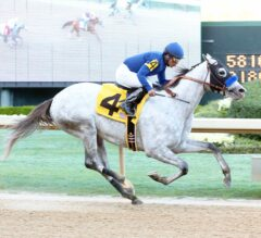 Oaklawn Report #10: Cupid Pulls Back His Bow in the Rebel Stakes