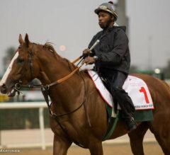 Dubai World Cup Betting Odds at US Racing