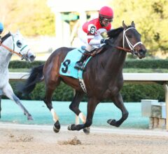 Oaklawn Park Barn Notes: Cox and Landers Making Formidable Team