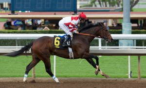 Songbird wins the Santa Ysabel Stakes - Photo credit: Chris Aplin