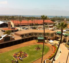 Del Mar Report #7: Paid Workout for Masochistic