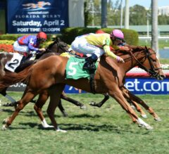 Gulfstream Park Notes: Full Sister to Turf Star Lady Shipman Sparkles in Career Debut