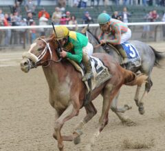 Madefromlucky Looks Tough in $125,000 Stymie at Aqueduct