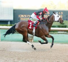 Subtle Indian Goes Gate to Wire in $100,000 Hot Springs Stakes at Oaklawn Park