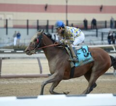 Salutos Amigos Erupts From Last to First to Take G3 Tom Fool at Aqueduct