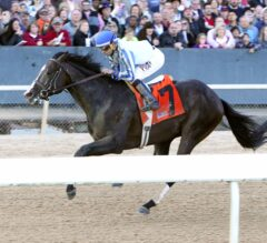 Racing Festival of the South: Grade 2 Oaklawn Handicap Preview