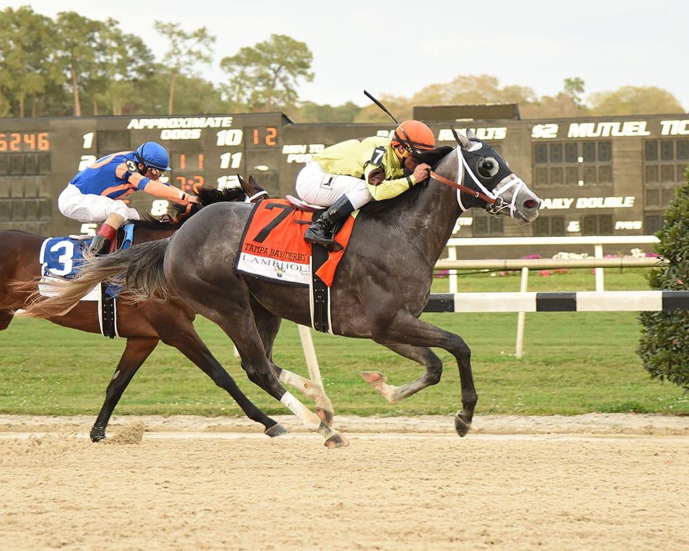 Destin winning the Lambholm South Tampa Bay Derby - Photo Credit: SV Photography