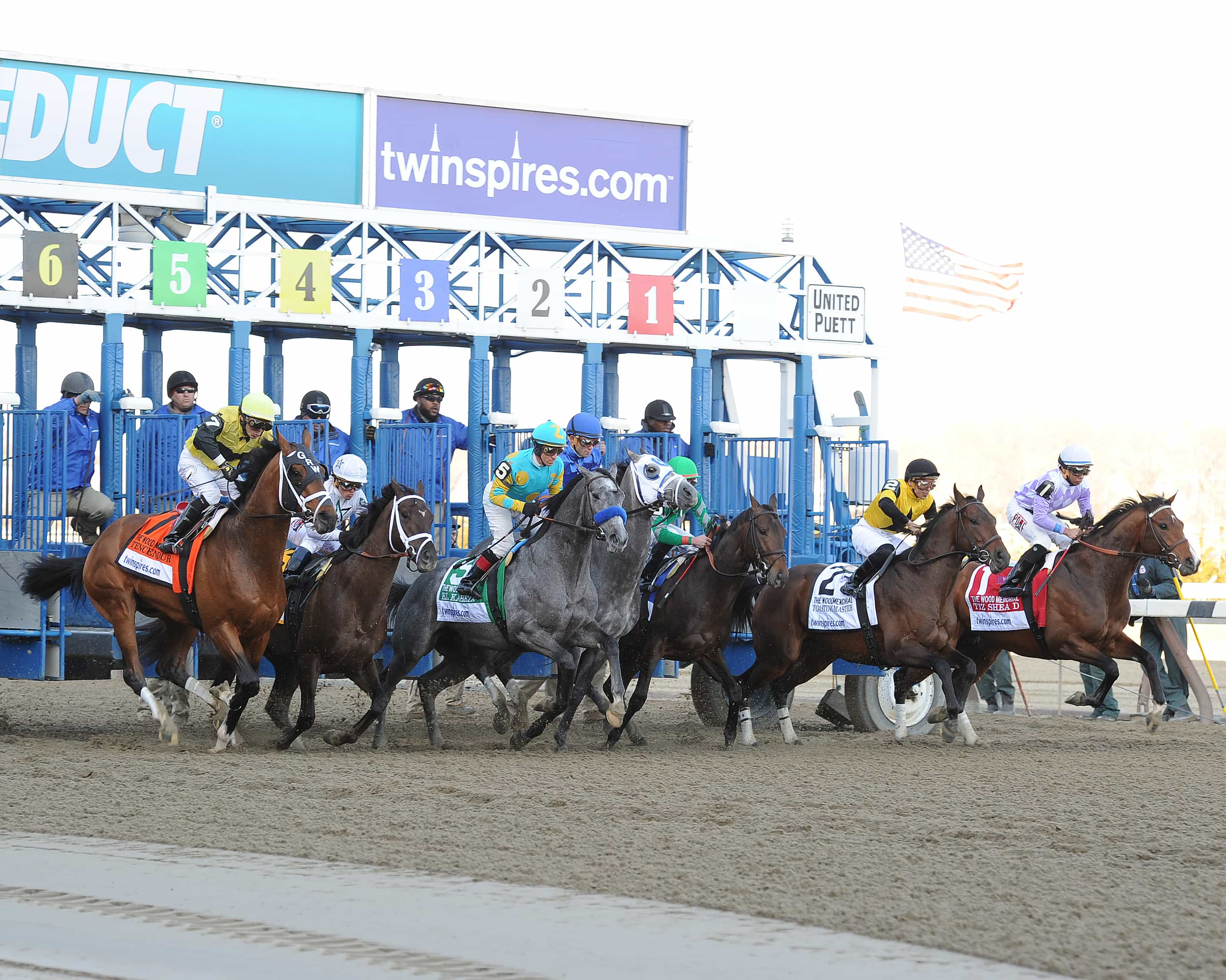 Frosted Wins Wood - Credit: Susie Raisher/NYRA