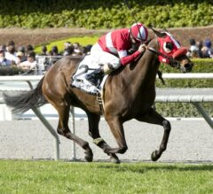 California-Bred What a View Goes Gate to Wire to Win G1, $400,000 Frank E. Kilroe Mile
