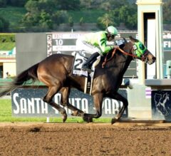 Big 'Cap Winner Melatonin Leads Loaded Field in G1, $500,000 Gold Cup at Santa Anita