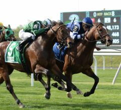 A Lot Looks to Do Just Enough in Packed G3 Jaipur Field