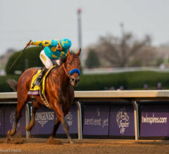 Personal Top 5 Favorite Breeders' Cup Moments