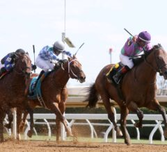 Martin Garcia Guides Ami's Flatter to Impressive G3 Commonwealth Win; Reactions and Replay
