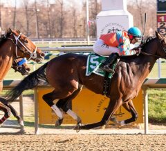 Awesome Speed Gets the Distance in $100,000 Federico Tesio
