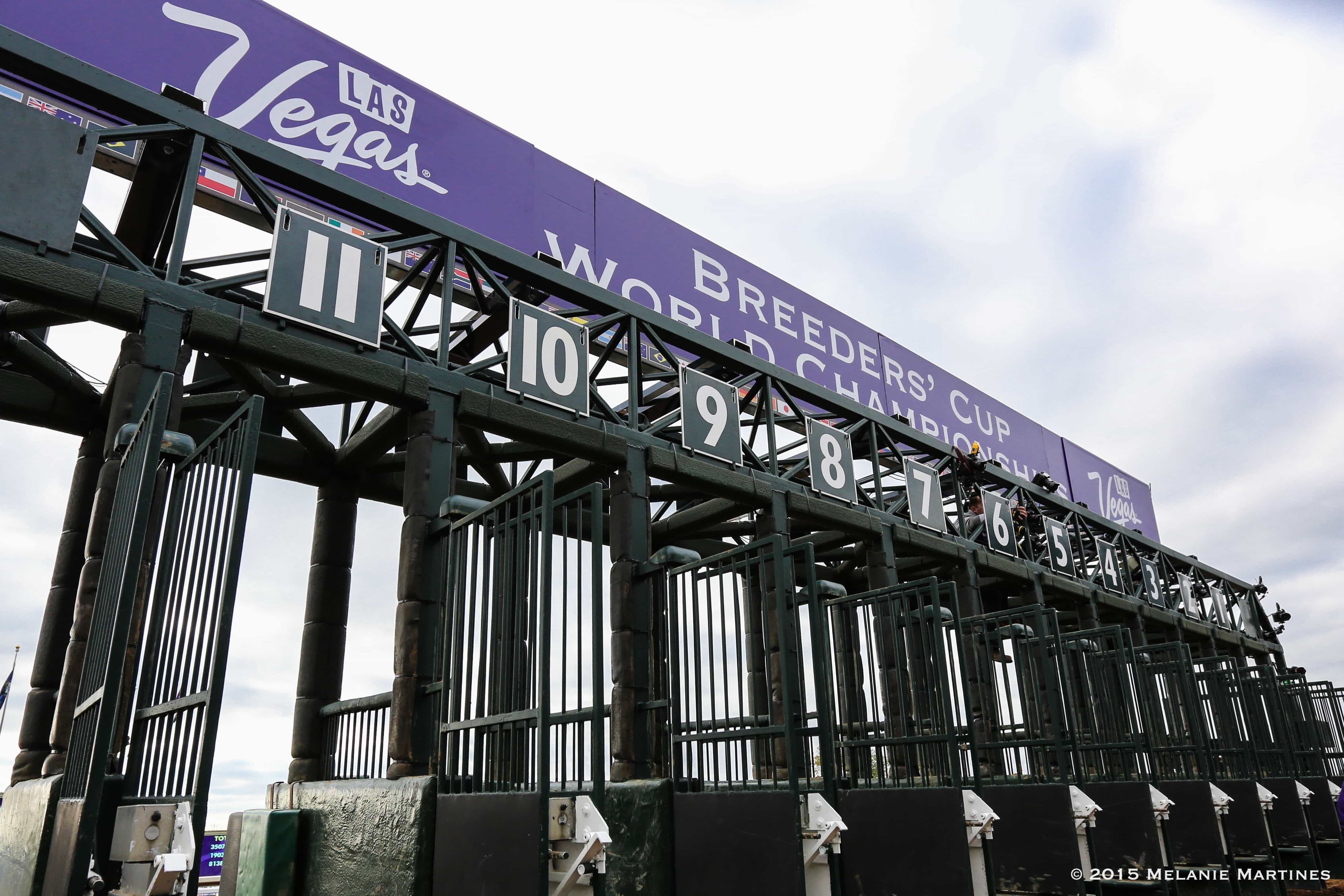 Breeders' Cup GATE Photo Credit: Melanie Martines