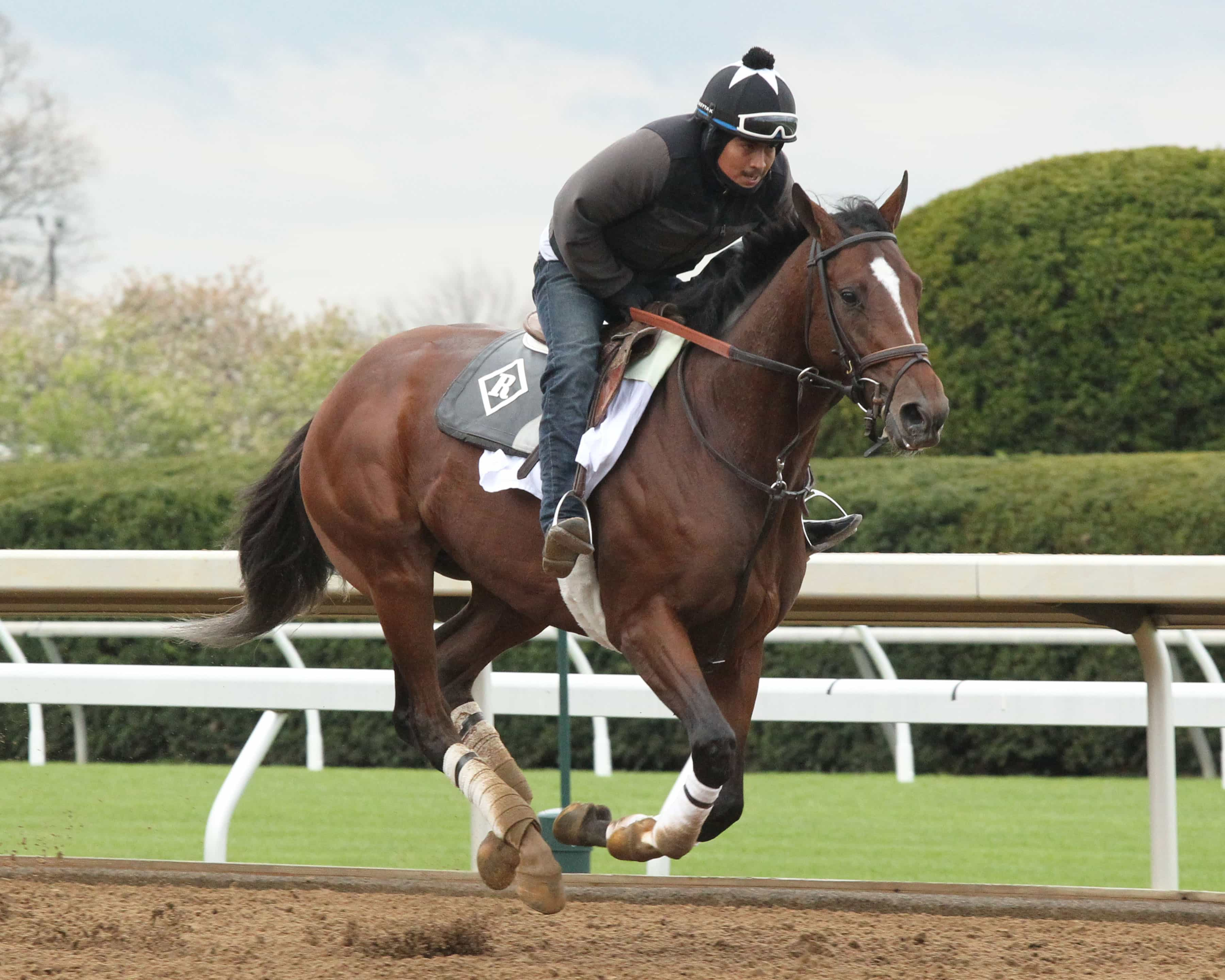 Keeneland Barn Notes Romans Horses Join Blue Grass Preparations At Keeneland Thoroughbred