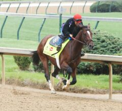 Brody's Cause, Tom's Ready, Fellowship Breeze During Special Training Session