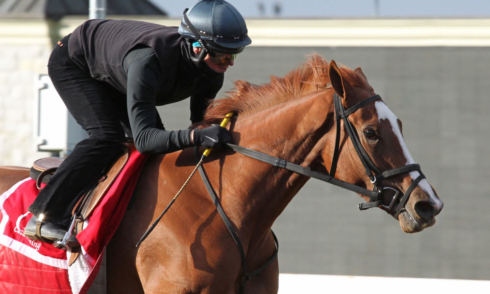 Keeneland Barn Notes All Blue Grass Horses On The Track Friday At Keeneland Thoroughbred