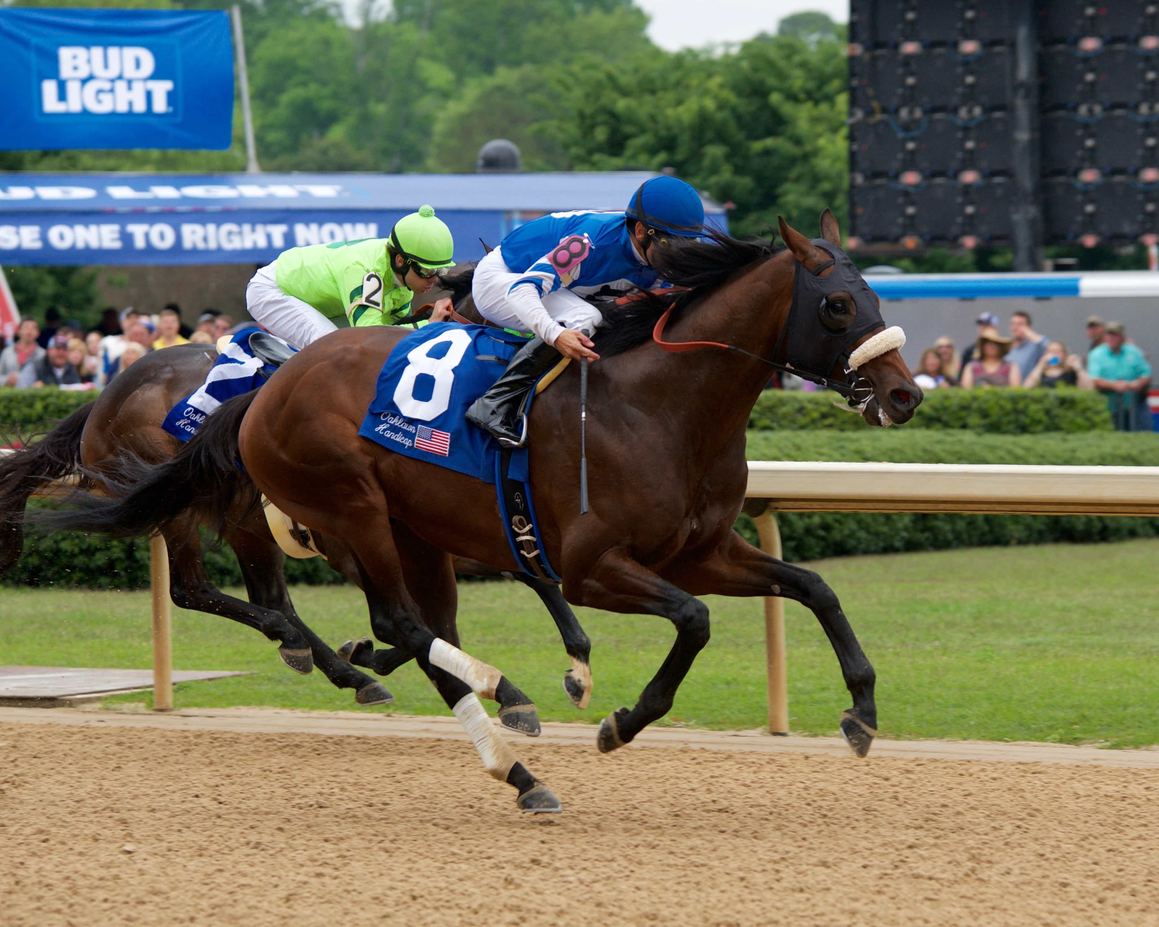 Effinex and Mike Smith passing Melatonin to win the Oaklawn Handicap  Chris Aplin
